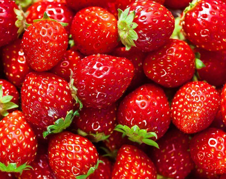 Outback Cherry Tart Cherry Preserves   Beautiful Summer Strawberries   The Welsh Hills Inn