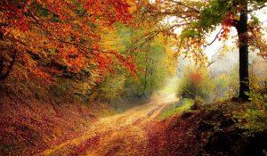 Granville Ohio Autumn Scene | Explore Licking County Link | The Welsh Hills Inn